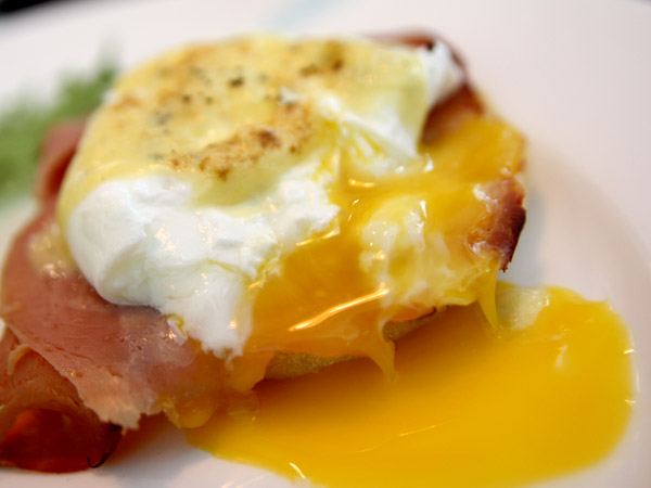 Blackbird Café – Chill Out with Sunday Brunch and New Zealander Coffee