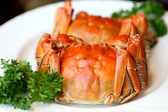 Taste Paradise – The Rich Exquisite Taste of Hairy Crabs