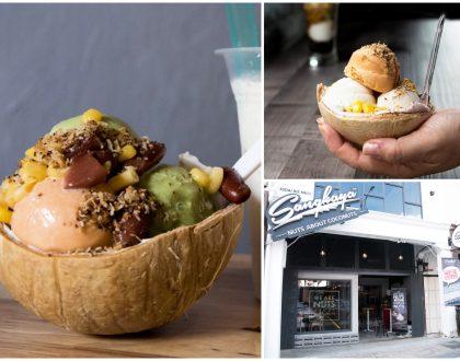 Sangkaya – Malaysia Coconut Ice Cream Creamery, At Johor Bahru Next to Checkpoint