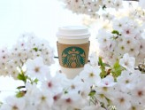 Starbucks Ueno Park - Best Place To Drink Your Frappuccino While Sakura Viewing