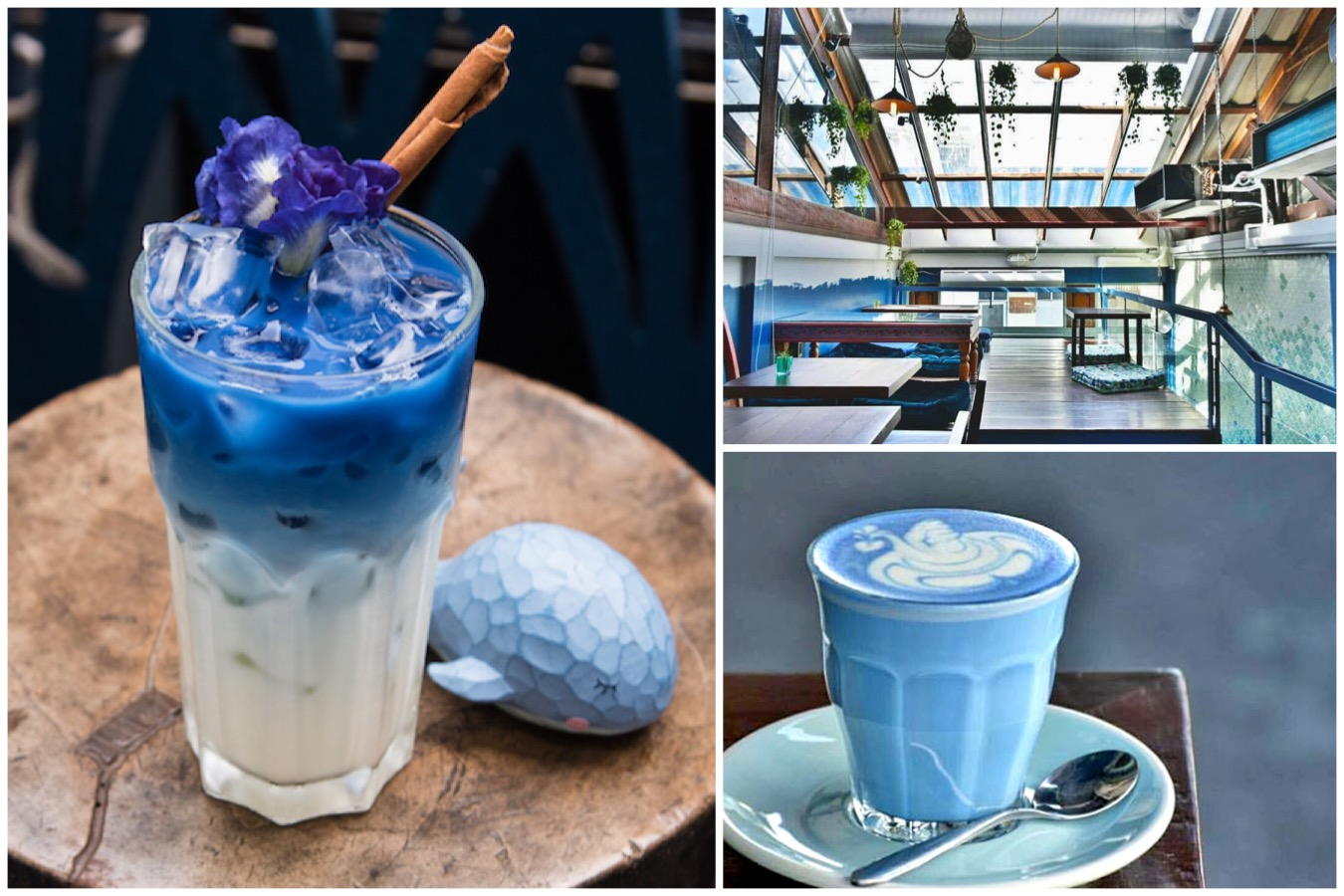 "Blue Whale Maharaj – Azure Blue Latte In Bangkok ""Blue"" Me Away. Café All Dressed In Blue"