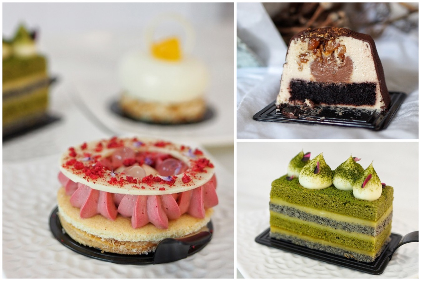 purist patisserie exquisite entremet cakes found in the