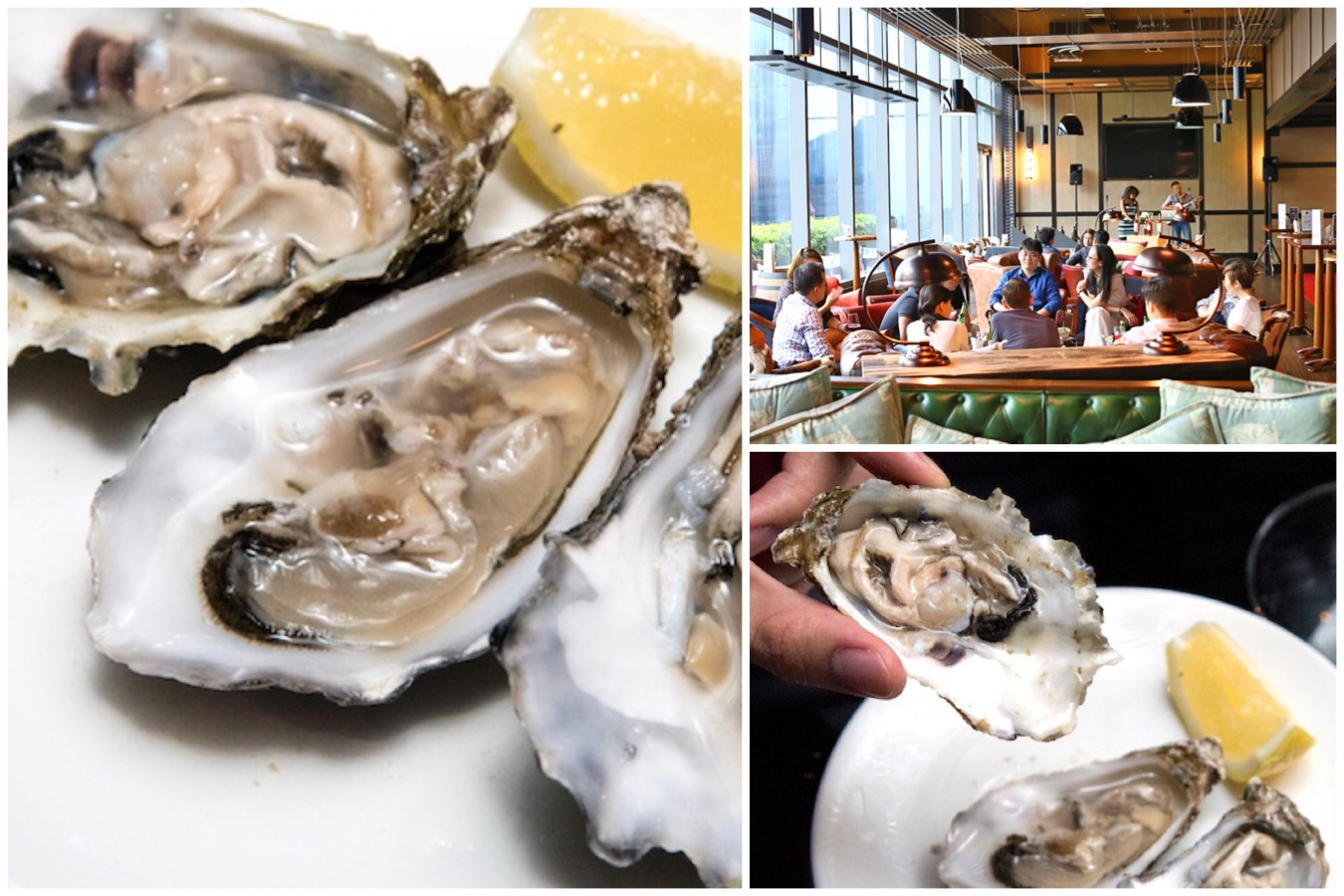 "Cook & Brew – The Freshest ""Oyster Thursdays"" At The Westin Singapore, A Dozen At $29++"