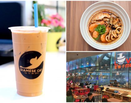 Siamese Cat Café - This Used To Be Tuk Tuk Cha, At Suntec City And Novena Square