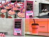 Zapangi 자판기 – Pretty In Pink Café Hidden Behind A Vending Machine, At Mangwon-dong Seoul