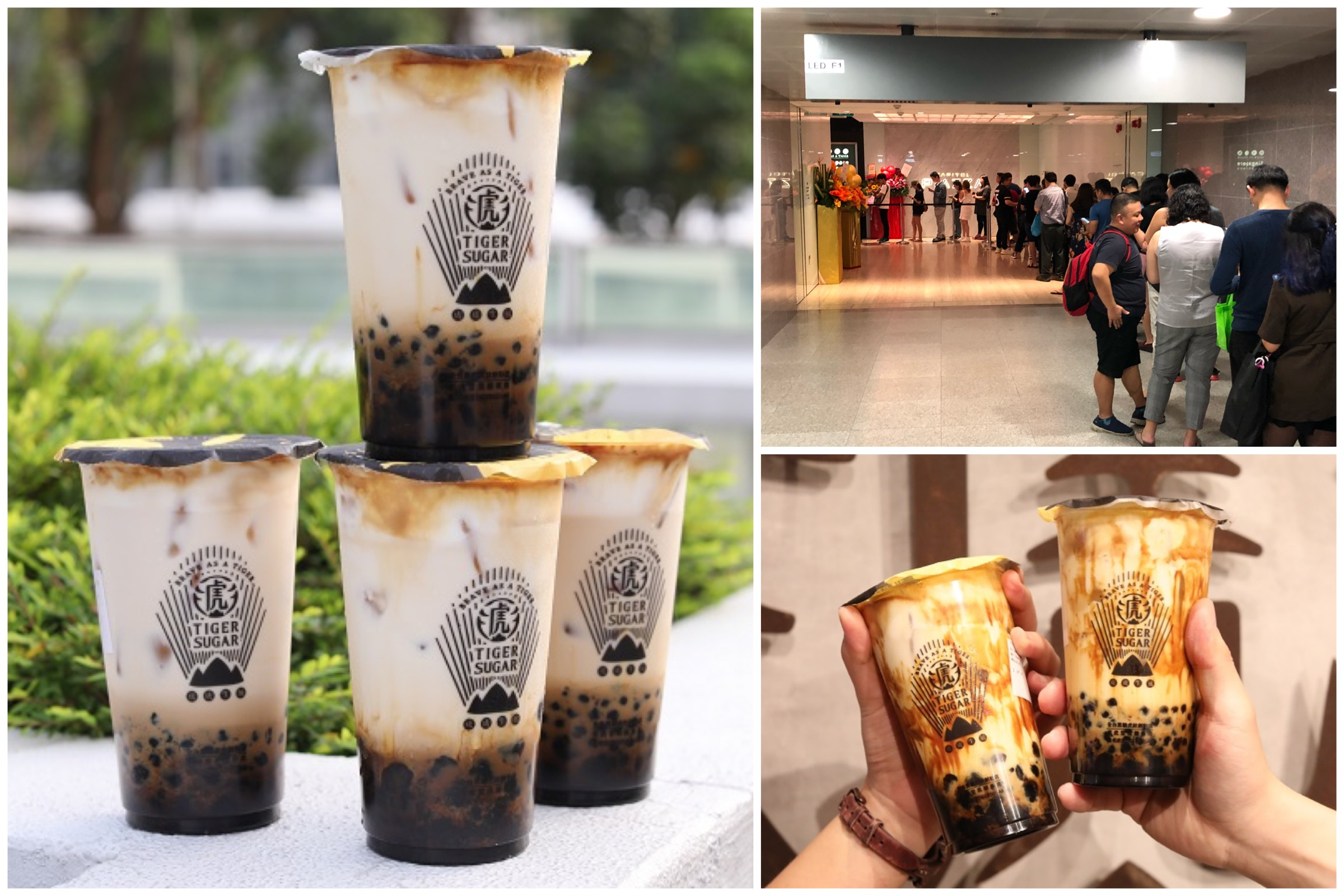 Tiger Sugar Singapore - Popular Brown Sugar Milk Shop Opening At Chinatown Point 8 Dec (Sat)
