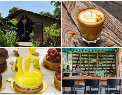 Tiong Bahru Bakery Safari - Safari Themed Cafe At Dempsey, With Zebra Cakes And Pink Lattes
