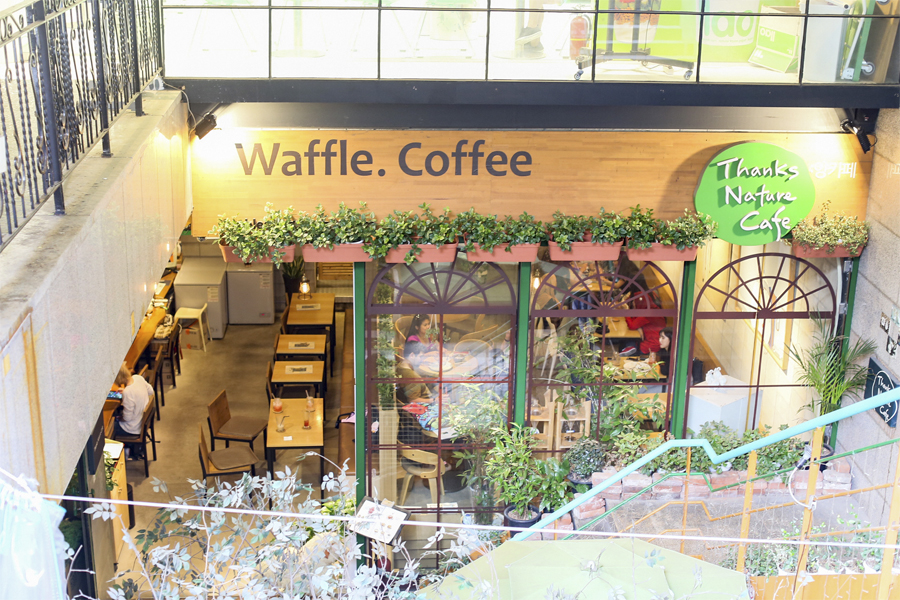 Image result for thanks nature cafe hongdae